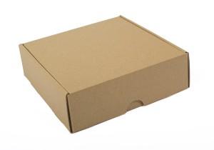 caja de envio cerrada en kraft_2